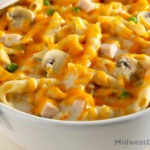 Turkey tetrazzini with cheddar and parmesan.